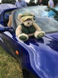Helmingham Hall Festival of Classics & Sportscars